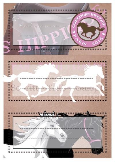 HERMA 5526 10x Schuletiketten Pferde, beglimmert