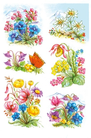 HERMA 3382 10x Sticker DECOR Gebirgsblumen