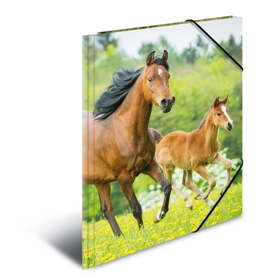 HERMA 7145 3x Sammelmappe A3 PP - Pferde