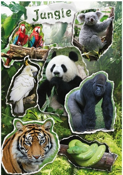 HERMA 3711 10x Sticker MAGIC Jungle, Prismaticfolie