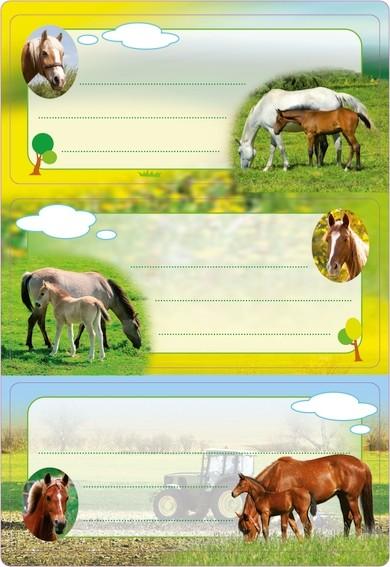 HERMA 5568 10x Schuletiketten Pferde, beglimmert
