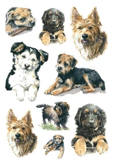HERMA 3341 10x Sticker DECOR Hunde