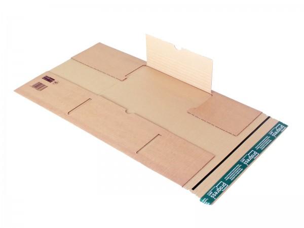 Buch-Versandverpackungen mit zentraler Packgutaufnahme DIN C4 35