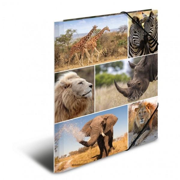HERMA 19214 3x Sammelmappe A4 Karton Afrika Tiere