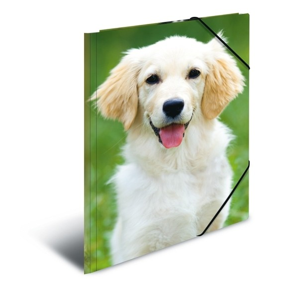 HERMA 7144 3x Sammelmappe A3 PP - Hunde