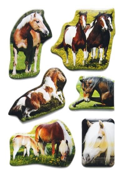HERMA 6197 10x Sticker MAGIC Tierfotos Pferde, Lackpuffy
