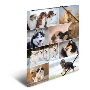 HERMA 19218 3x Sammelmappe A3 Karton Hunde