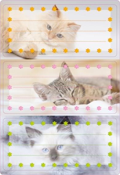 HERMA 5569 10x Schuletiketten Katzen, beglimmert
